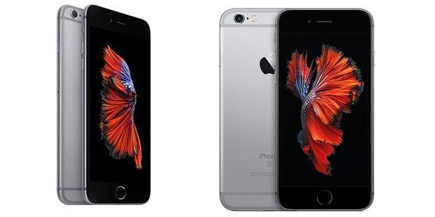 Hofer verkauft iPhone Plus zum Kampfpreis