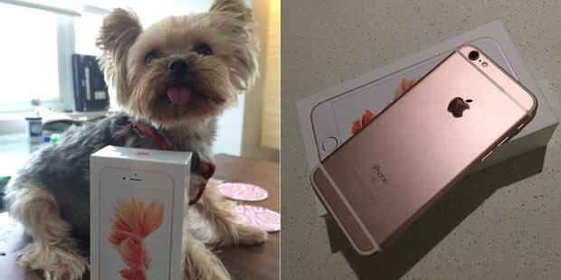 Panne: Kundin bekam iPhone 6s zu früh