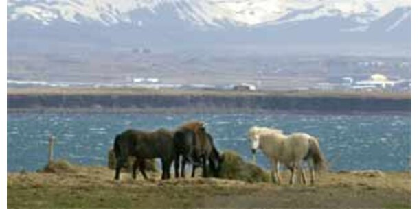 Ist der Heilige Gral in Island?