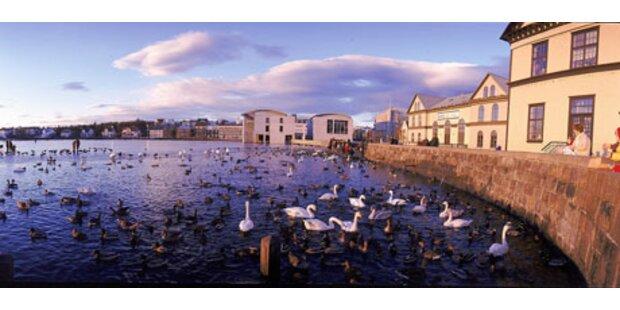 Urlaub in Island: Billig wie noch nie