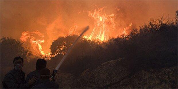 Großbrand in Israel wütet weiter