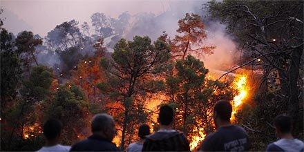 Feuerbrand im Karmelgebirge in Israel - Brandstiftung?! 11.698