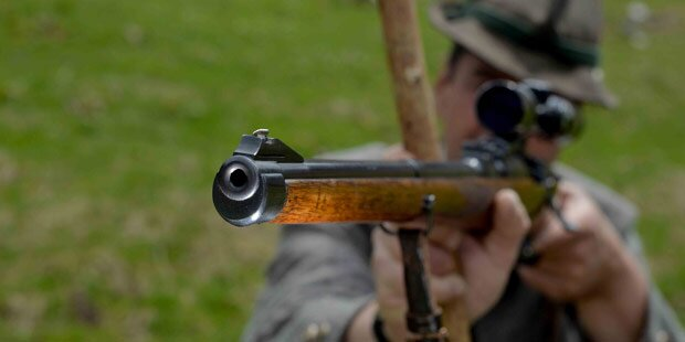 Treibjagd: Wiener in Kopf geschossen