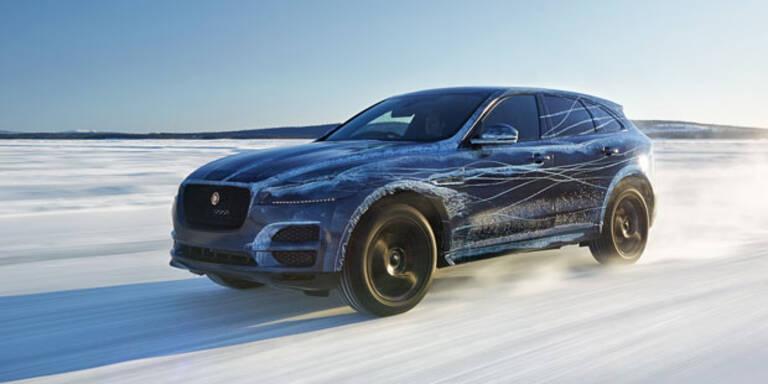 Video: Jaguar F-Pace im Extremtest