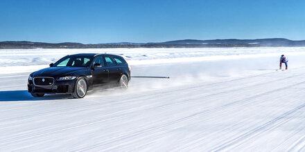 Jaguar und Skistar holen Weltrekord