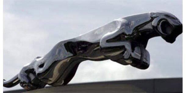 Inder erhöhen Offerte für Jaguar
