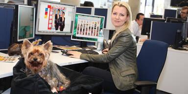 Hund Newsroom
