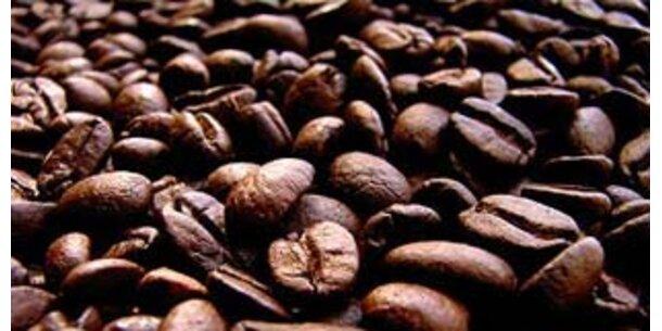Kaffeepreis in 4 Jahren mehr als verdoppelt