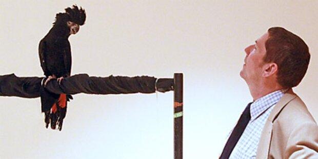 Prozess um gichtkranken Kakadu beendet