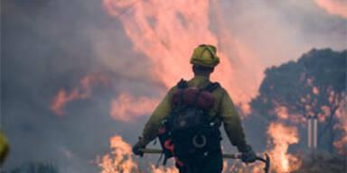 Fortschritte bei Waldbränden