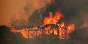Waldbrände: Fellner! Live aus Kalifornien