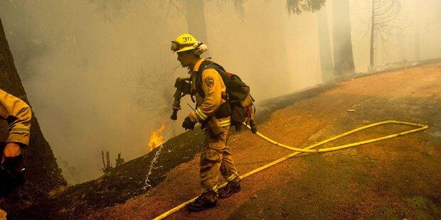 Waldbrände in Kalifornien breiten sich aus