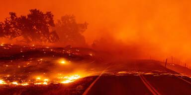 50.000 Menschen fliehen vor Waldbrand im Süden Kaliforniens