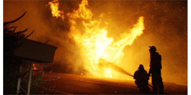 Keine Anklage gegen Zehnjährigen nach Waldbränden