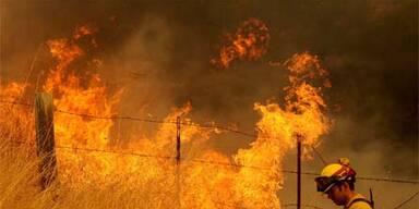 kalifornien_waldbrand
