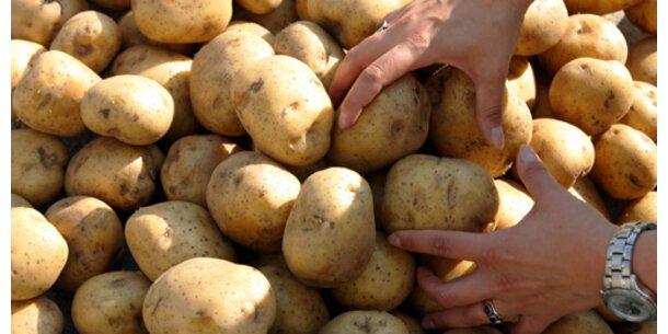 Kartoffeln um 60 Cent teurer