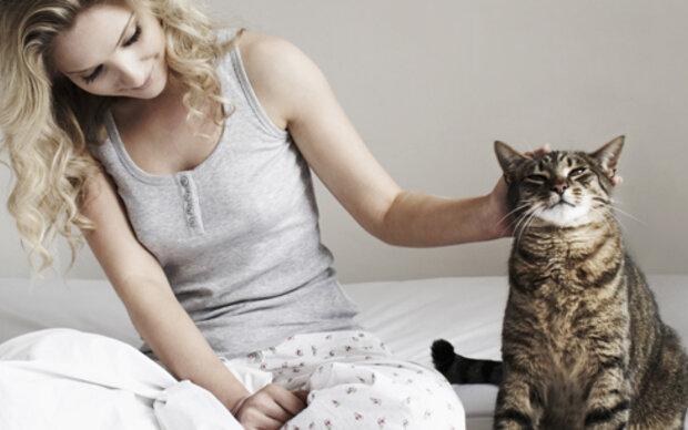 So bringt Ihre Katze Sie um