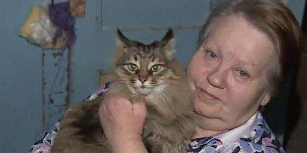 Katze rettet Baby vor Kältetod