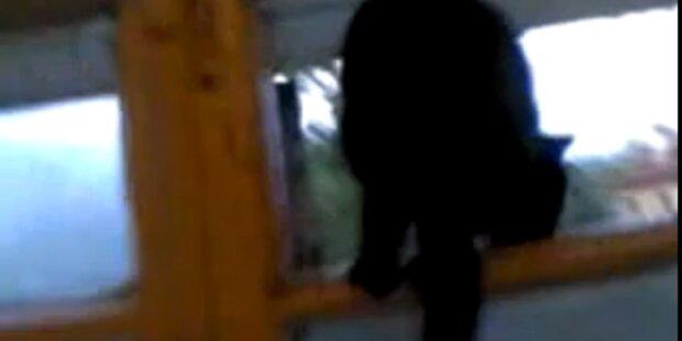 VIDEO: Bellende Katze gefilmt