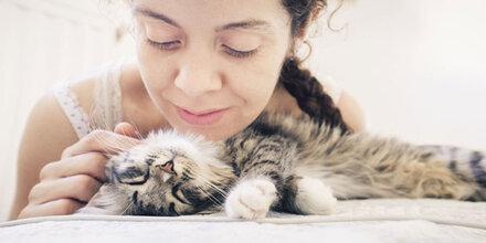 Hoffnung für Katzenliebhaber mit Allergie