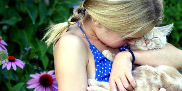 Das passende Haustier für Ihr Kind