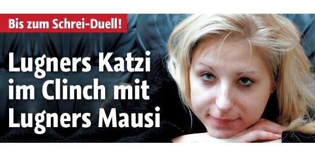Lugner-Krieg: Katzi vs. Mausi