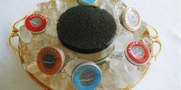 Hofer verkauft Kaviar für 1.000 Euro pro Kilo