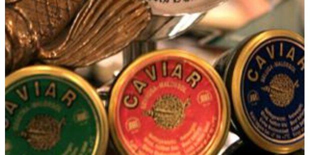 Mailand verschenkt echten Kaviar an Bedürftige