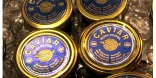 Moskau stellt 2 Tonnen illegalen Kavier sicher
