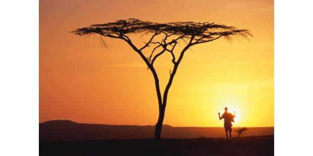 Safari-Abenteuer in Afrika