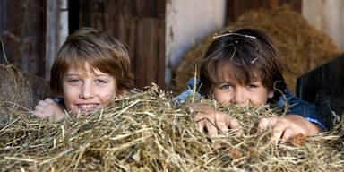 Kinder vom Bauernhof entwickeln viel seltener Allergien