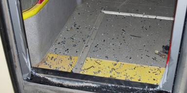 Schüsse auf Bus: Lehrling zu Geldstrafe verurteilt