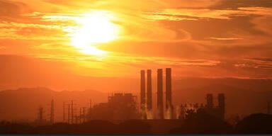 Erde brennt: Temperaturen bis 60 Grad