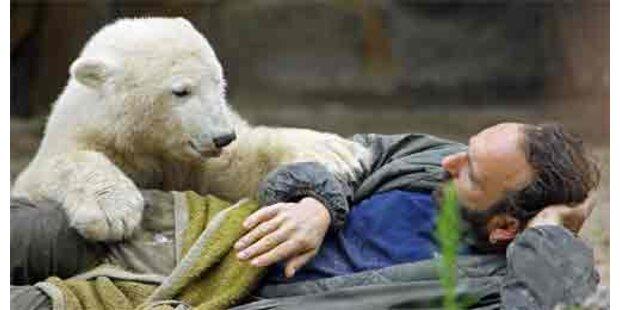 Knuts Ziehvater starb an Herzinfarkt