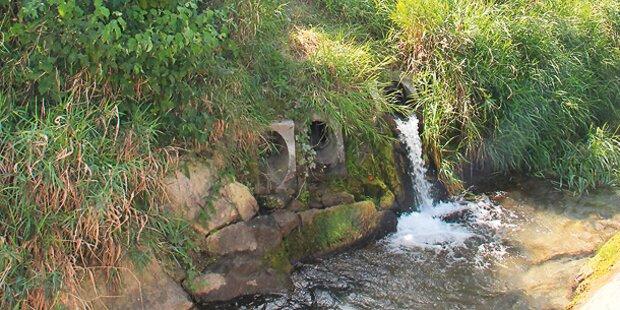 Pestizide im Grundwasser - Prozess