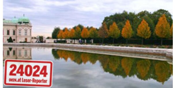 Die schönsten Herbstfotos unserer Leser