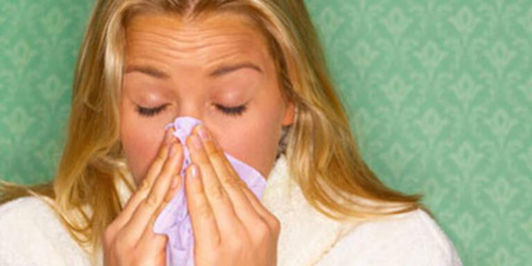 Erkältungen natürlich behandeln