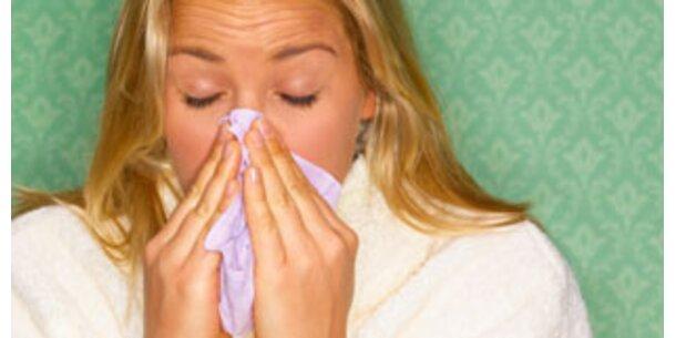 Experten warnen vor hartnäckigem Virus