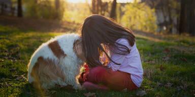 Kranke Haustiere können Besitzer stark belasten