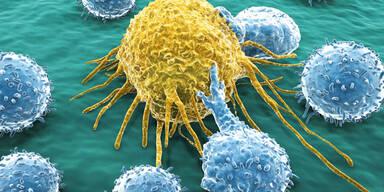 Kampf gegen Krebs