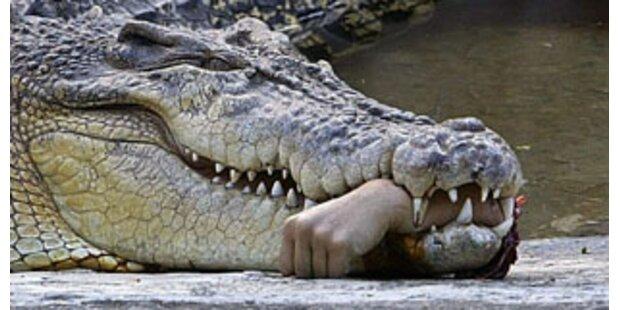 Krokodile töteten 14 Menschen in Mosambik