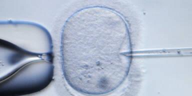 Künstliche Befruchtung ungeregelt
