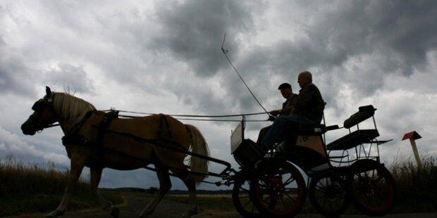 Landwirt (77) von Kutsche überrollt - schwer verletzt