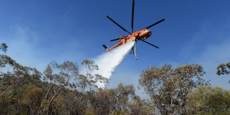 Löschflugzeug in Australien abgestürzt
