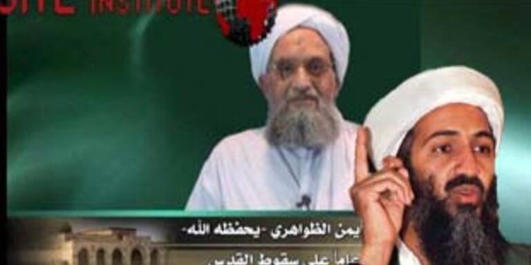 Bin Laden bei bester Gesundheit