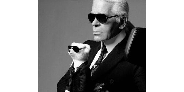 Lagerfeld entwirft sich selbst als Steiff-Teddy
