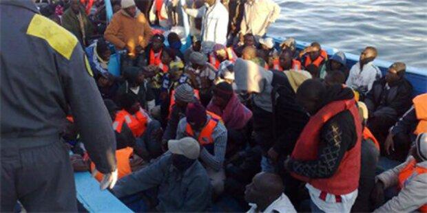 700 Flüchtlinge auf Lampedusa gelandet