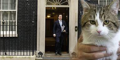Larry Downing Street 10