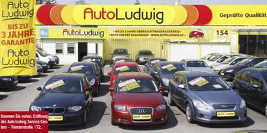 Advertorial Auto Ludwig