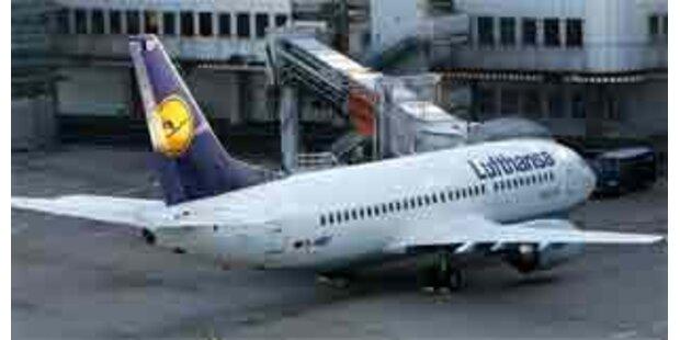 Vogelschlag zwang Flugzeug zur Notlandung